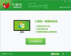 大番茄极速一键重装系统 V1.2.1中文绿色版