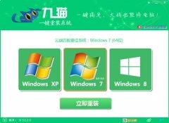 九猫极速一键重装系统v3.1.1中文绿色版